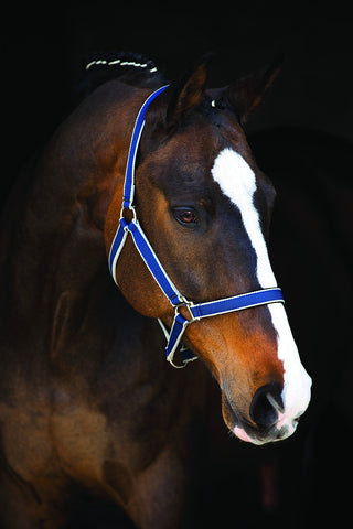 Horseware Amigo Halter - Horse & Hound Tack Shop & Pet Supply