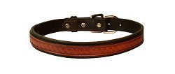 Perri's Padded Leather Dog Collar - Horse & Hound Tack Shop & Pet Supply