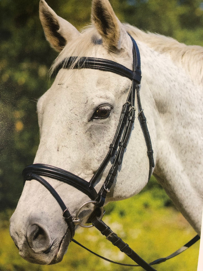 Shires Avignon Louisville Bridle - Horse & Hound Tack Shop & Pet Supply