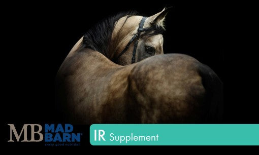 Mad Barn IR Supplement – Pellets - Horse & Hound Tack Shop & Pet Supply