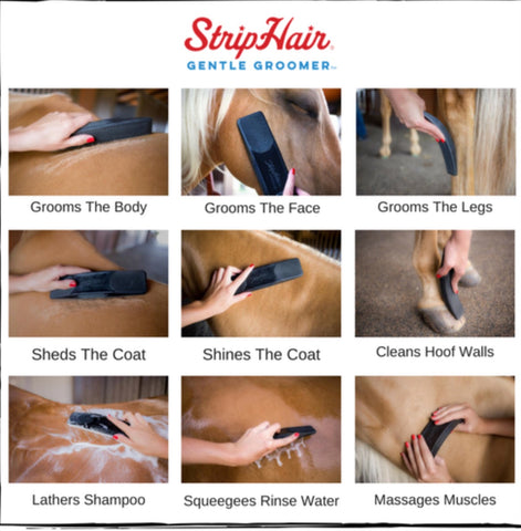 Strip Hair Gentle Groomer