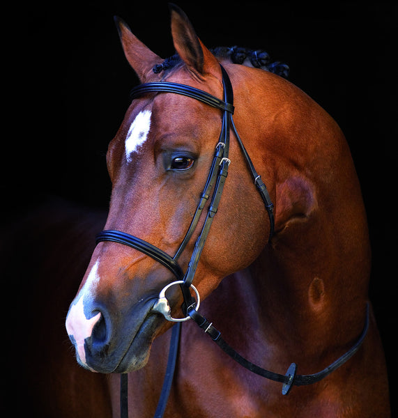 Horseware Ireland Mio Bridle - Horse & Hound Tack Shop & Pet Supply