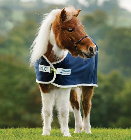 Amigo® Petite Jersey Cooler - Horse & Hound Tack Shop & Pet Supply