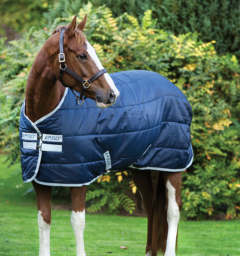 Amigo® Insulator - Horse & Hound Tack Shop & Pet Supply