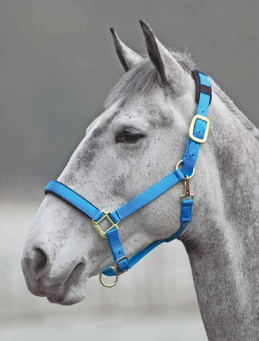 Topaz Nylon Halter with Breakaway - Horse & Hound Tack Shop & Pet Supply