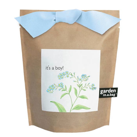 Potting Shed Creations It's A Boy Garden in a Bag