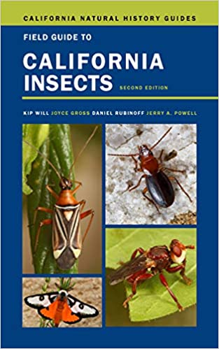 Field Guide to California Insects