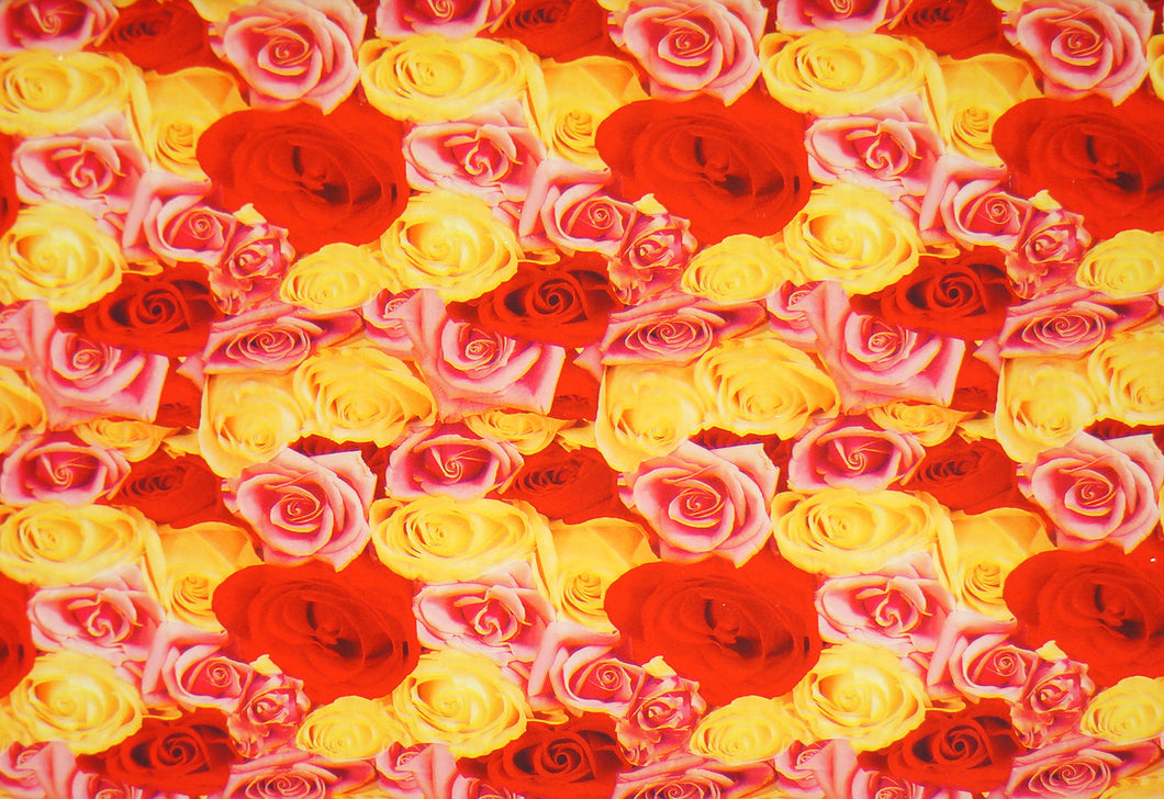 Red, Pink, & Yellow Roses