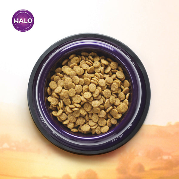 Halo Adult Healthy Weight Grain Free Holistic Turkey, Turkey Liver & Duck Recipe Dry Dog Food