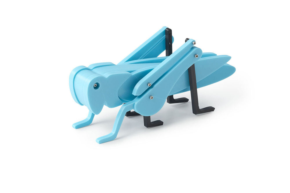 Blue grasshopper toy