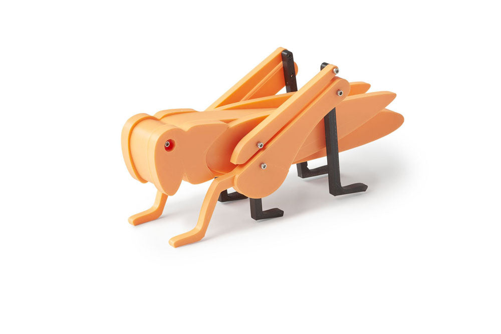Orange grasshopper toy