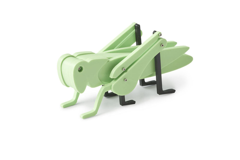 Green grasshopper toy