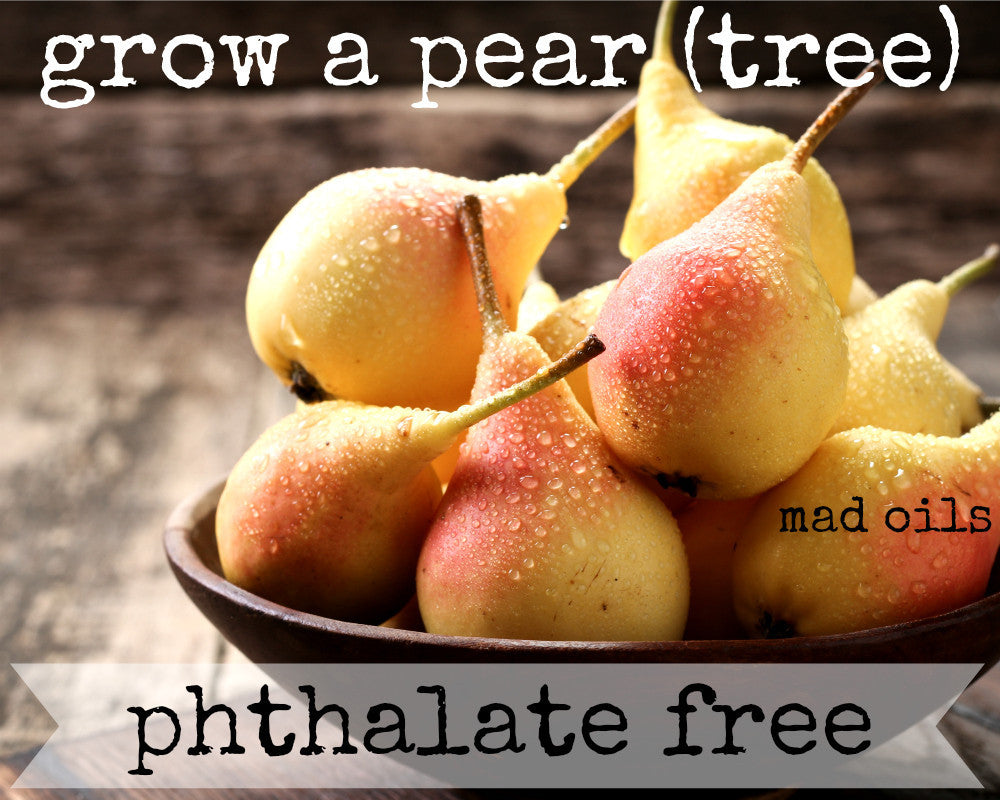 Grow A Pear (Tree) Fragrance Oil