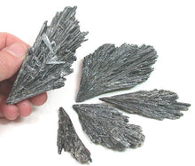 Black Kyanite Witches Broom (Raw)