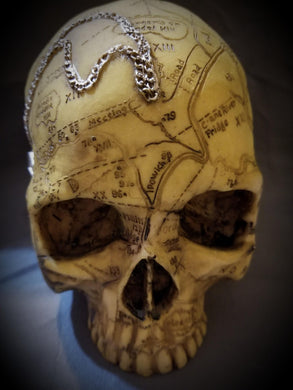 Salem Witch Skulls