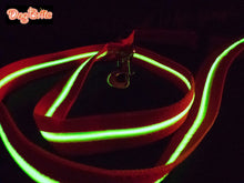 Brite Dog Waterproof Lighted (EL) Leash - rechargeable (green or red fabric, with bright green light)