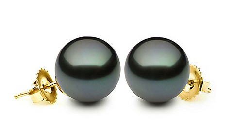 12-13mm Black Tahitian Pearl Stud Earrings - from Holsten Jewelers