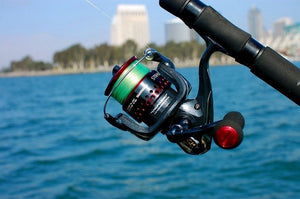 10 Steps to Start Fishing