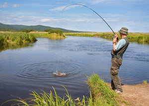 The 4 Finest Freshwater Fishing Hacks