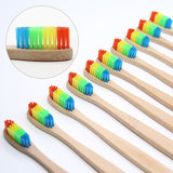 Style No. WT201 - All-Natural Wooden Toothbrush with Colorful Rasta Bristles