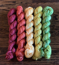 "Divine Sock Mini Set - ""Leaf Peepin' in Jersey"" - BigFootFibers"