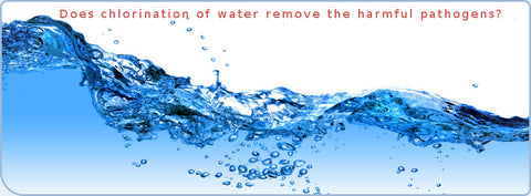 Does chlorination of water remove the harmful pathogens
