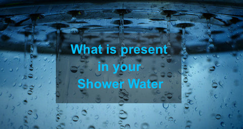 What is present in your Shower water