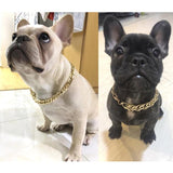 Dog Gold Necklace Choker Collar Fashion Gold Plated