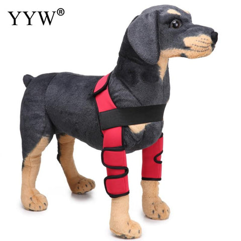 Pet Products For Dogs Care Kneepad Dog Leggings