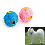 Pet Dog Ball Squeaker Toy