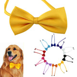 dog collar Chamsgend Pets hot selling Multicolor Dog neck tie or bow tie or Cat tie