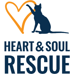 Heart & Soul Cat Rescue