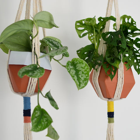 Macrame with Geometric Plant Pot