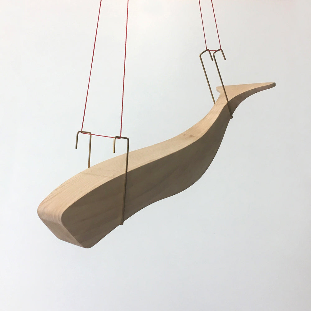 Hanging Sperm Whale