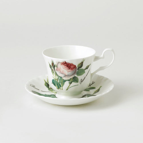 Roy Kirkham Redoute Rose Teacup & Saucer