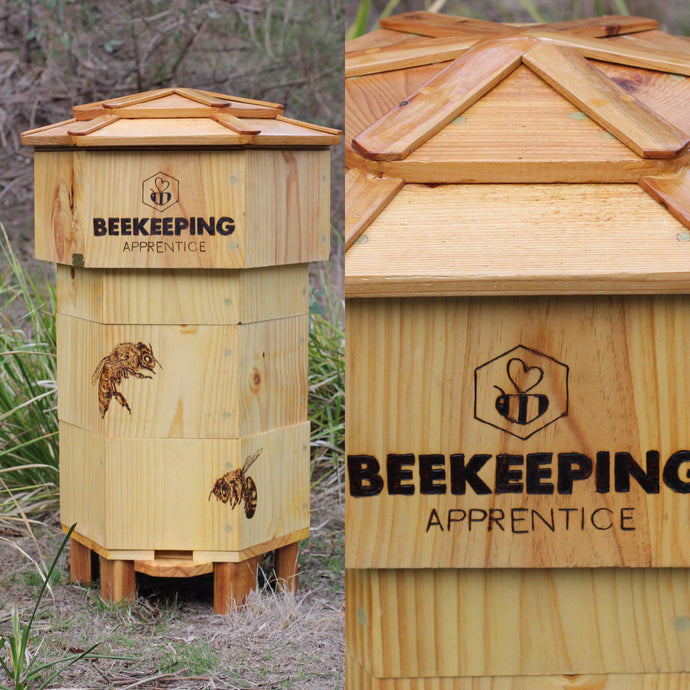 Start your Apprenticeship with our Online Beekeeping Course