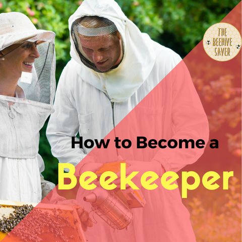 How to become a beekeeper