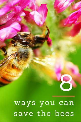 8 ways you can save the bees