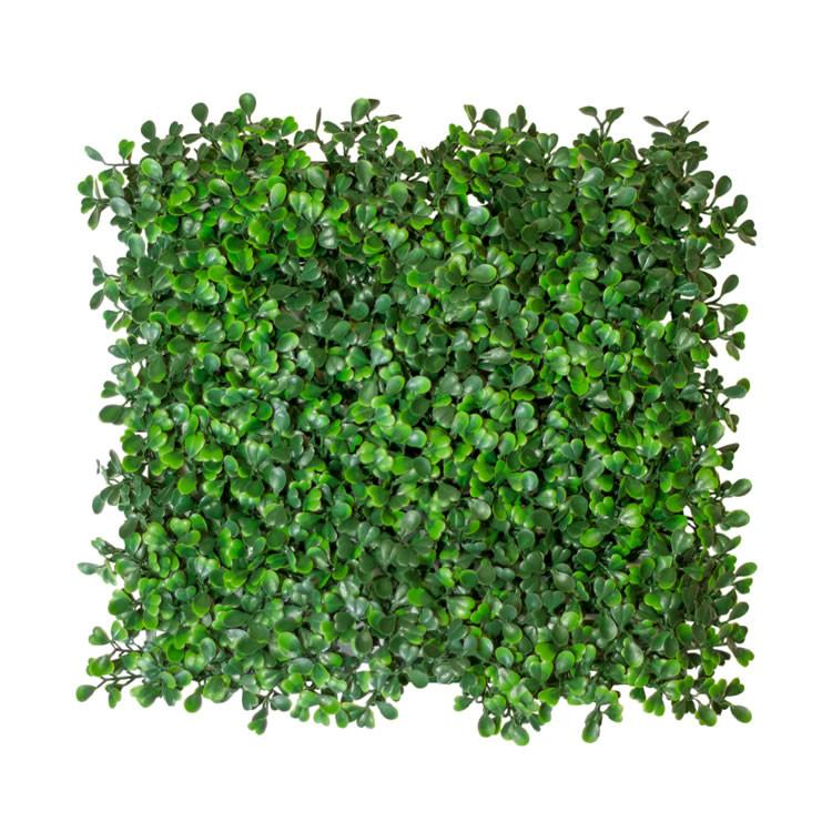 Artificial Boxwood Hedge Mat Uv Rated 1 Sq Ft Uvg103