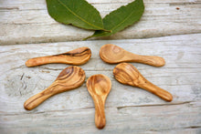 Olive Wood Very Small Tiny Coffee Sugar Spice Spoon Set, Set of 5 Salt Scoops