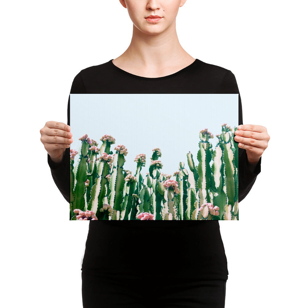 Blush Cactus Canvas