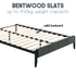 products/bentwood_2_3.png