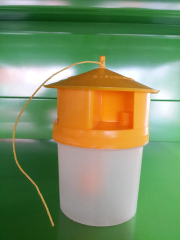 Pest trap for fruits and vegitables