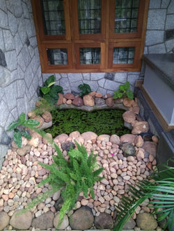 Pebble pond work
