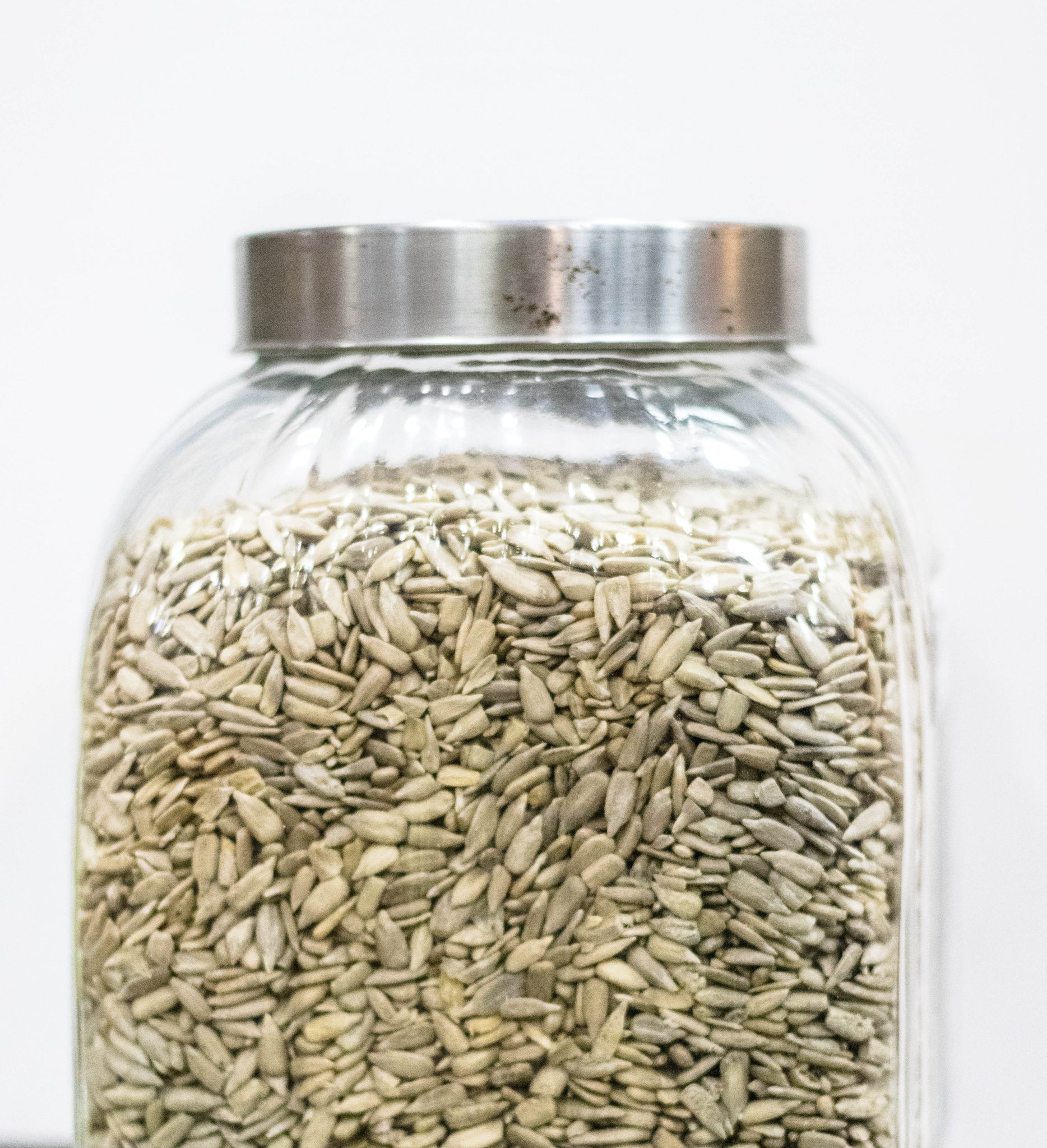 Sunflower Seed Plain