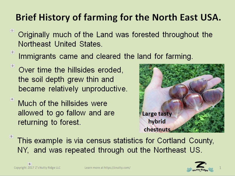 Short history of Farming in the Northeast US