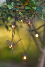Chain of Robin Lights