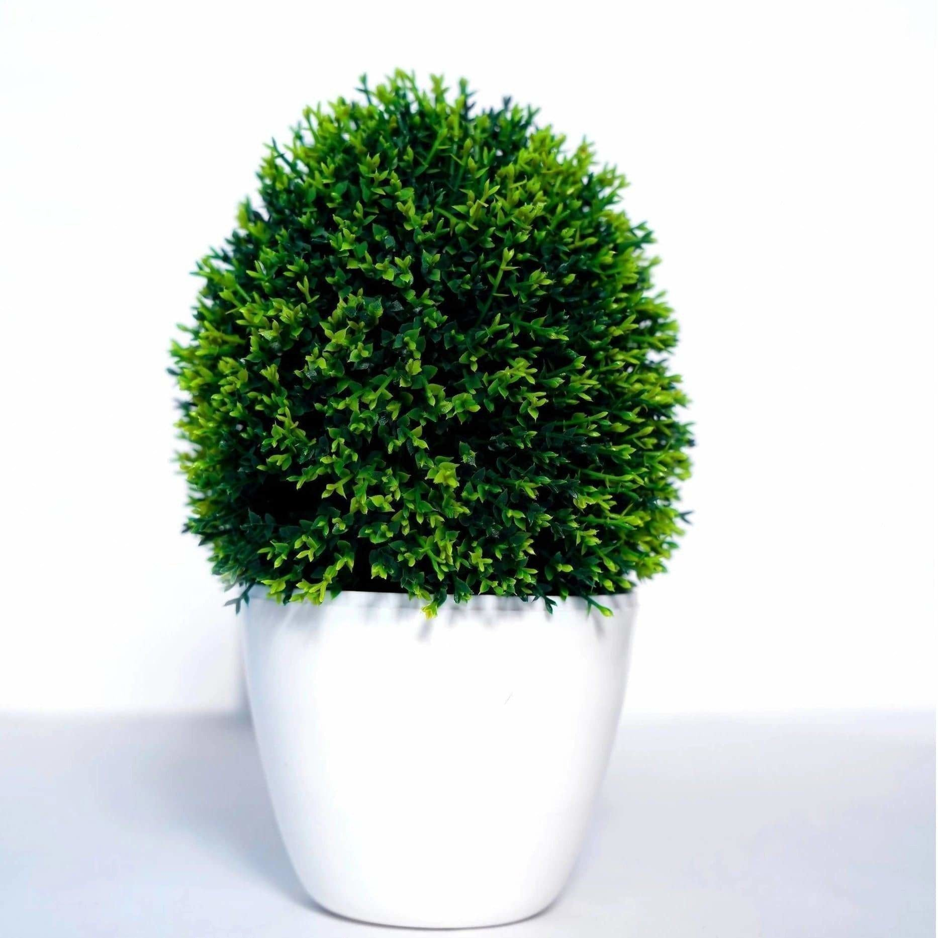 Chahat Decorative Artificial plant For Home
