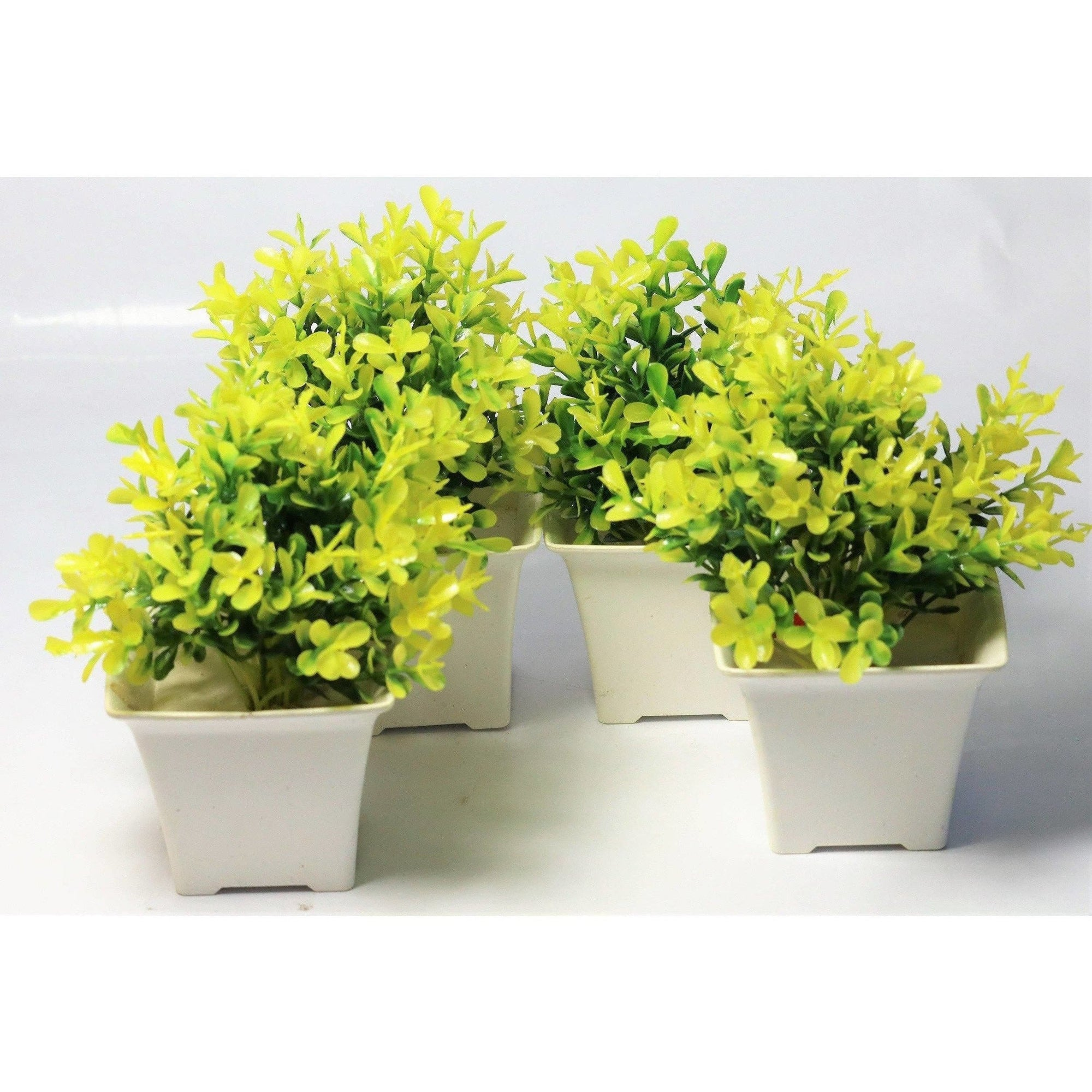 Chahat Decorative Artificial Plant 4 Piece Combo