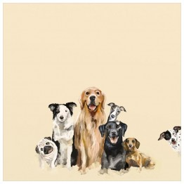 Greenbox Puppy Pack Canvas